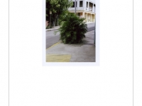 http://www.michaelmeyerphoto.com/files/dimgs/thumb_2x200_10_17_185.jpg
