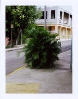 https://www.michaelmeyerphoto.com/files/gimgs/th-13_43_prculebra001.jpg