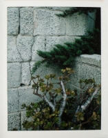 https://www.michaelmeyerphoto.com/files/gimgs/th-13_MMP_SmallPrints-8208.jpg